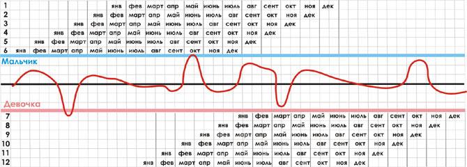 Калькулятор вероятности беременности