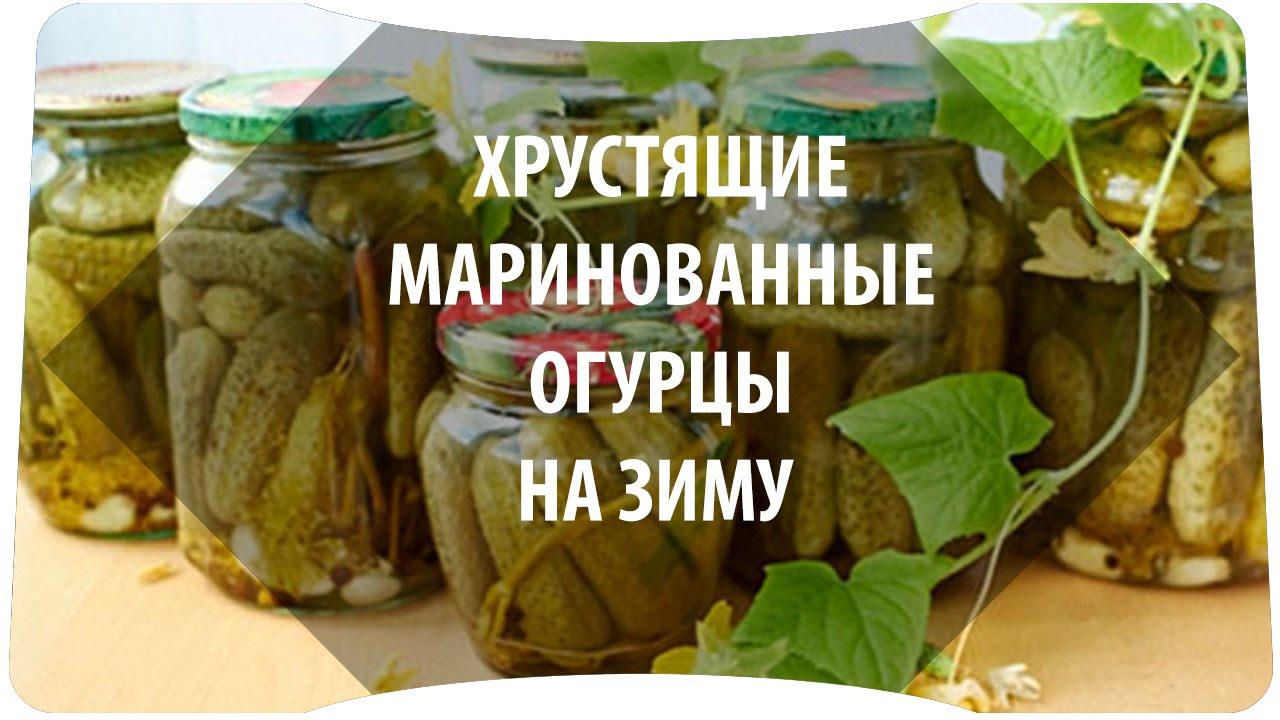 огурцы посолить рецепт