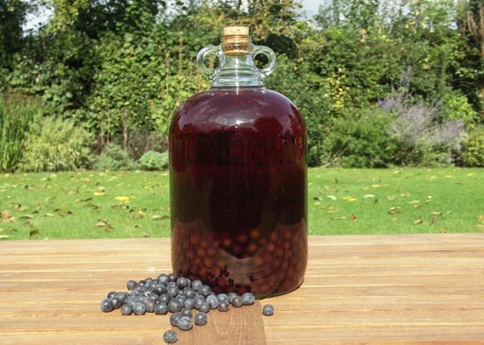 Как сделать домашнее вино в домашних условиях - Статьи на Pandaland