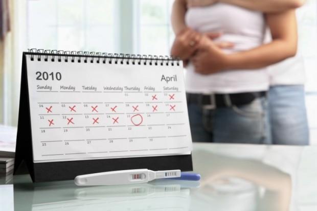 Калькулятор рассчитать акушерский срок беременности