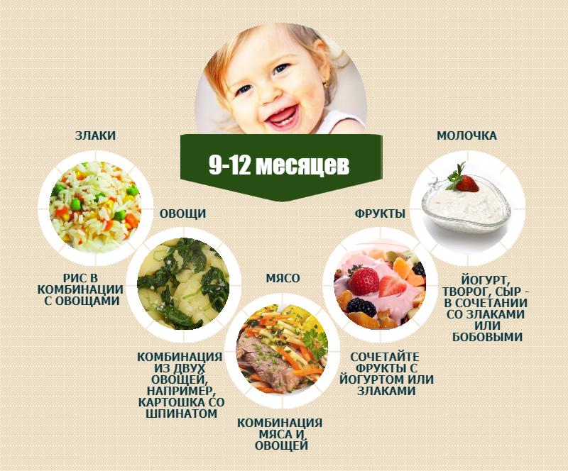 питание в 11 месяцев меню